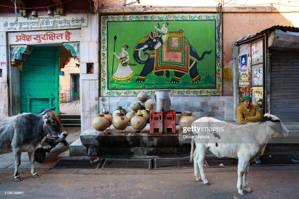 Water seller in Jodhpur Street : Stock Photo