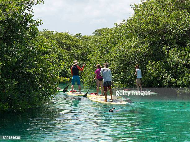 water sport in mexican sinkhole (cenote), mexico - quintana roo stock pictures, royalty-free photos & images