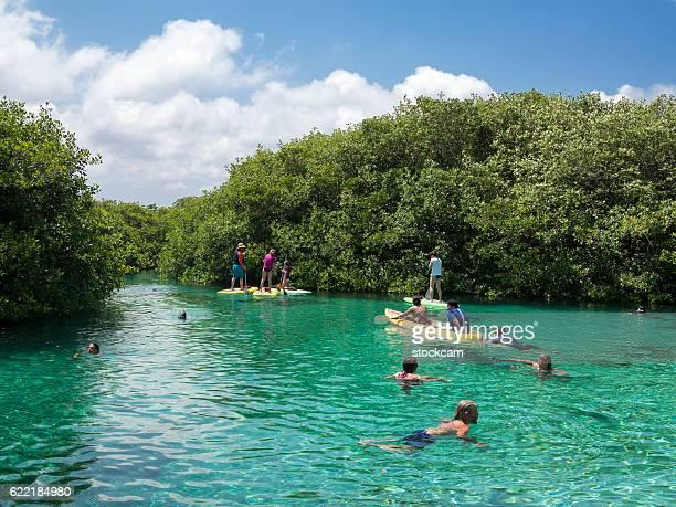 water sport in mexican sinkhole (cenote), mexico - playa del carmen fotografías e imágenes de stock