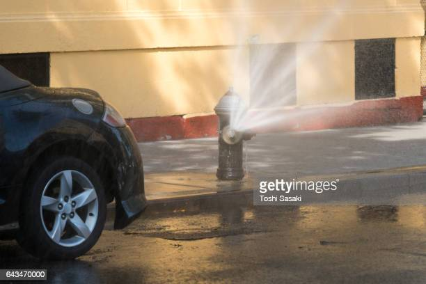 Water spray from a fire hydrant at Upper East Manhattan New York in summer.