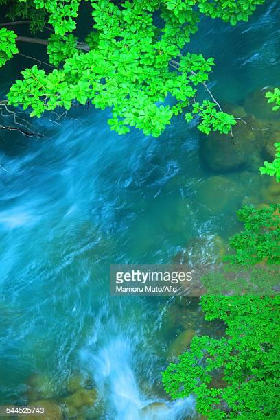 water stream - 八幡平市 ストックフォトと画像