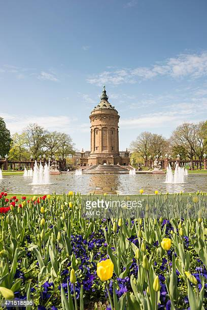 wasserturm, mannheim, germany - mannheim stock pictures, royalty-free photos & images