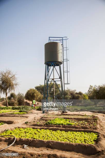 a water tower - water tower storage tank stock pictures, royalty-free photos & images