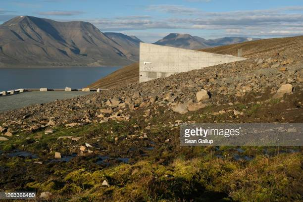 Water trickles down a hillside among moss next to the entrance to the Svalbard Global Seed Vault during a summer heat wave as mountains behind stand...