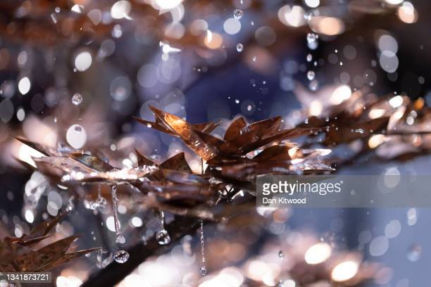Water trickles through a sculpture at the Chelsea Flower Show on September 22, 2021 in London, England. This year's RHS Chelsea Flower Show was...