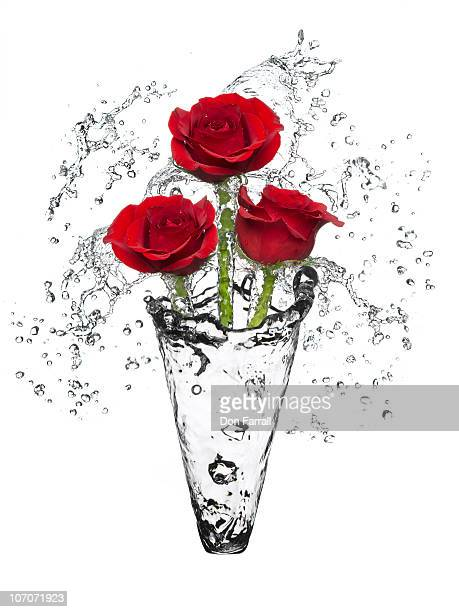 Water vase with three red roses