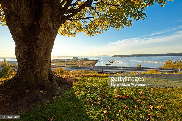 Water view in Everett, Washington, over the West Marine View Drive