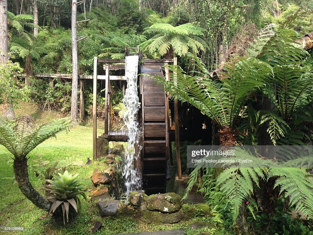 Water Wheel In Garden : Stock Photo