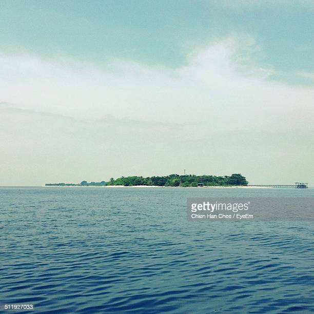 water with remote island of sand and fores - forens stock pictures, royalty-free photos & images
