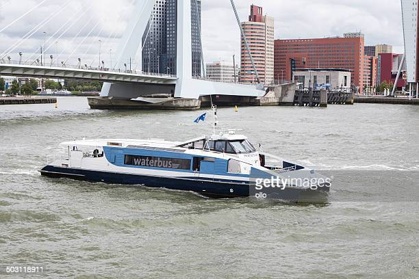 waterbus, rotterdam - meuse river stock photos and pictures