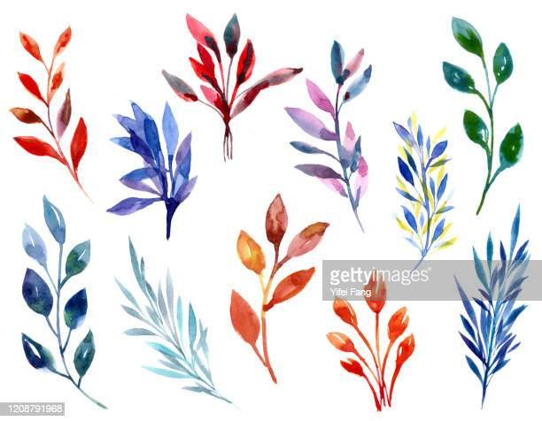 watercolour illustration of colourful leaves - illustration stock pictures, royalty-free photos & images