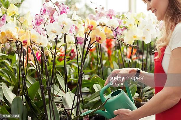 Hinter Blumen