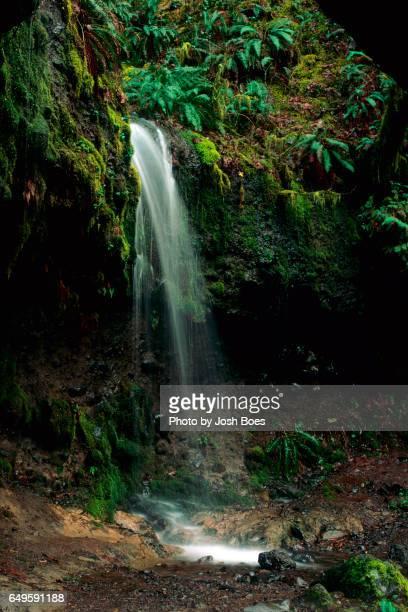Waterfall along The Eagle Creek Trail