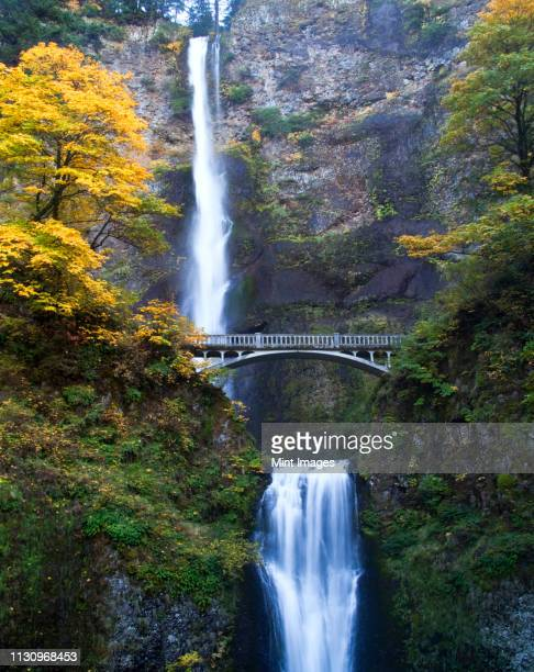 waterfall and bridge in autumn - multnomah falls stock pictures, royalty-free photos & images