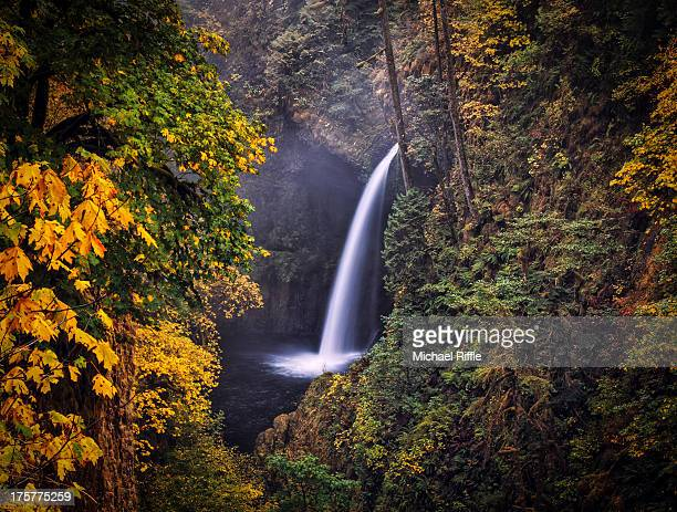 waterfall and fall colors, columbia river gorge - columbia river gorge stock pictures, royalty-free photos & images