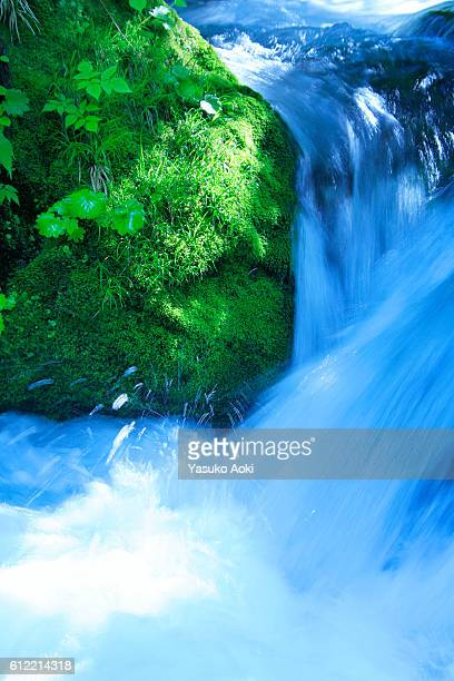 Waterfall and Oirase River