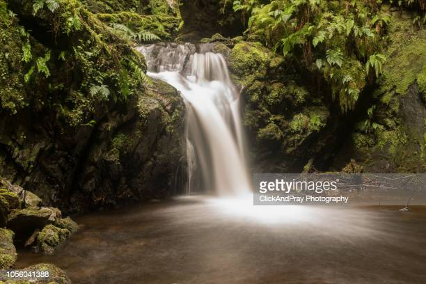 waterfall and pool - argyll and bute stock photos and pictures