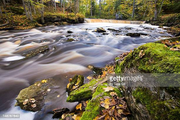 waterfall and river in autumn - harjumaa stock pictures, royalty-free photos & images