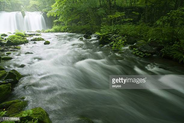 Waterfall and river
