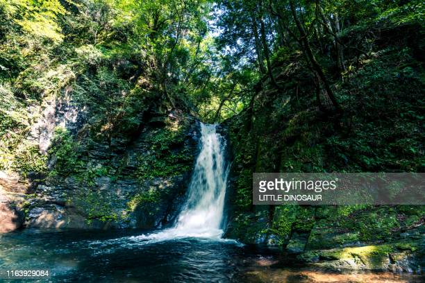 waterfall and the rock covered with moss. at the akame 48waterfalls (slow shutter) - ワイドショット ストックフォトと画像