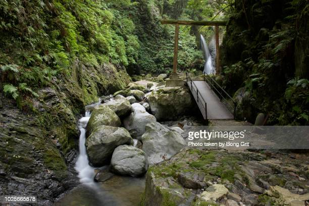 waterfall and torii - 岐阜県 ストックフォトと画像