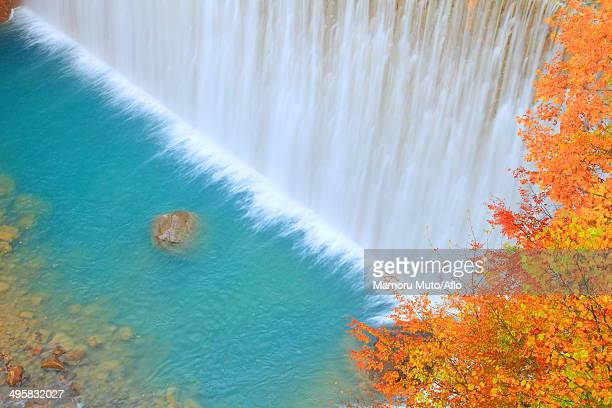 Waterfall and trees, Iwate Prefecture, Japan