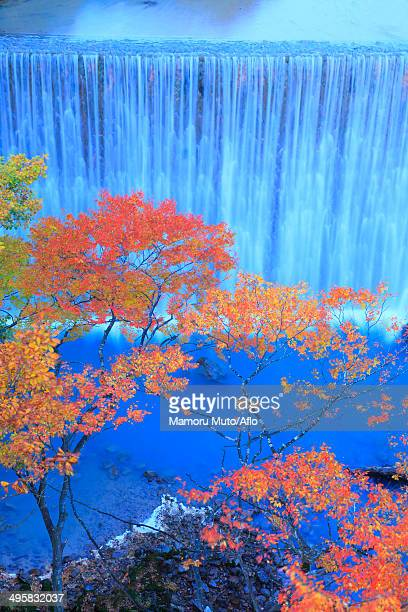 waterfall and trees, iwate prefecture, japan - iwate prefecture stock photos and pictures