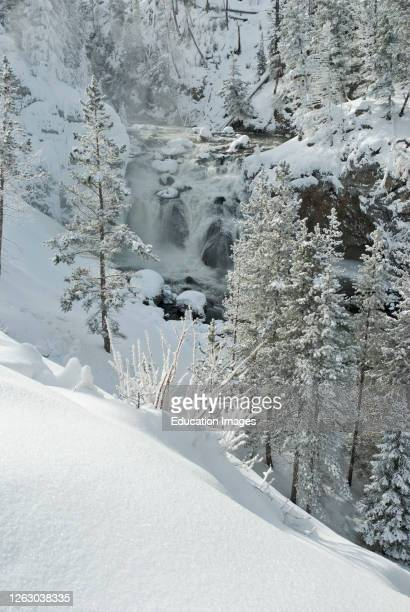 Waterfall and Winter Snow in Yellowstone National Park in Wyoming