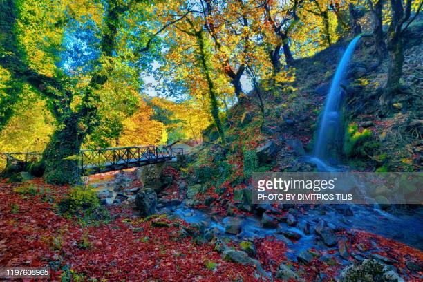 waterfall at anthochori - dimitrios tilis stock pictures, royalty-free photos & images