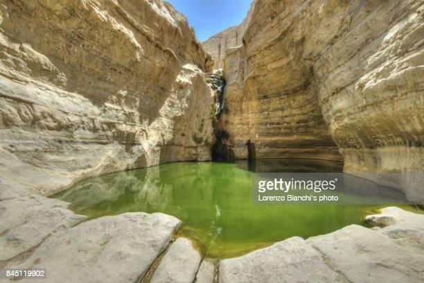 Waterfall at Ein Avdat, Israel