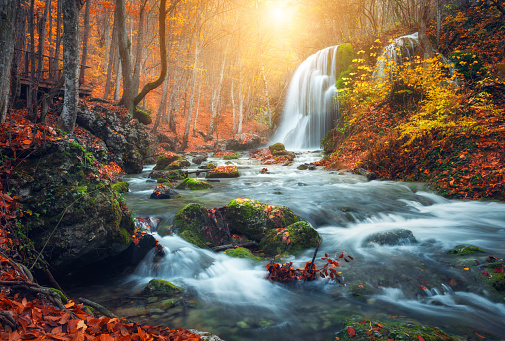 Waterfall at mountain river in autumn forest at sunset. 513297032