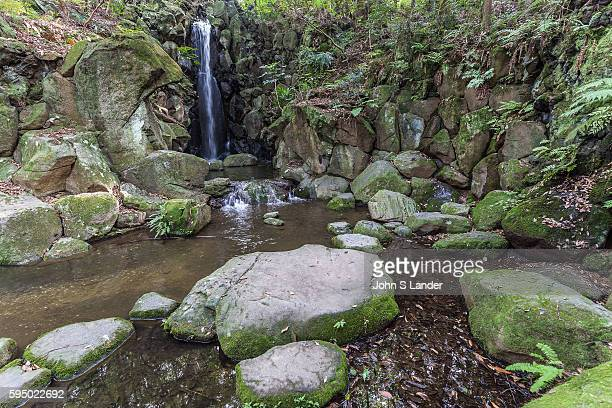 Waterfall at Naritasan Shinshoji Garden Naritasan Shinshoji is one of the most important Buddhist temples in the Tokyo Kanto area It is the Head of...