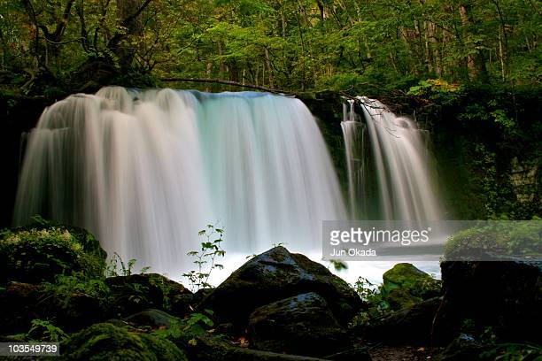 Waterfall at Oirase Japan