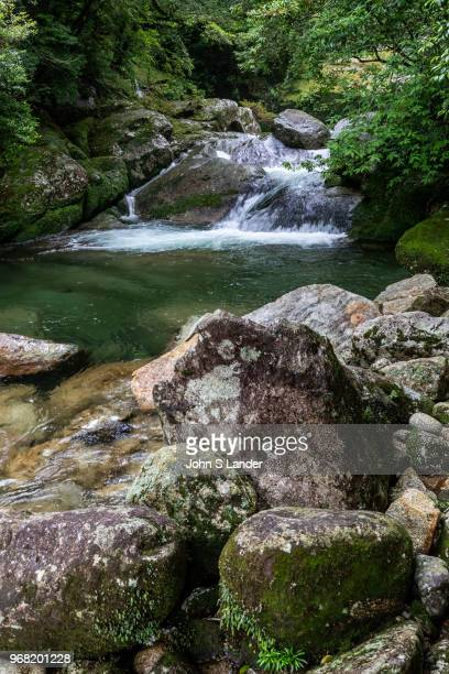 Waterfall at Shiratani Unsuikyo Ravine-va lush nature park containing many of Yakushima's ancient cedars. This nature reserve offers a network of...