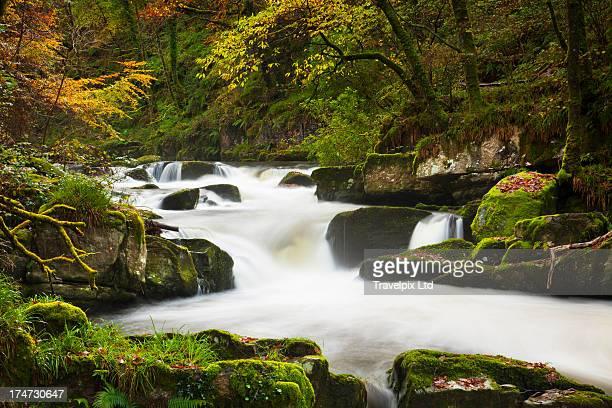 waterfall at watersmeet, exmoor, devon - exmoor national park 個照片及圖片檔