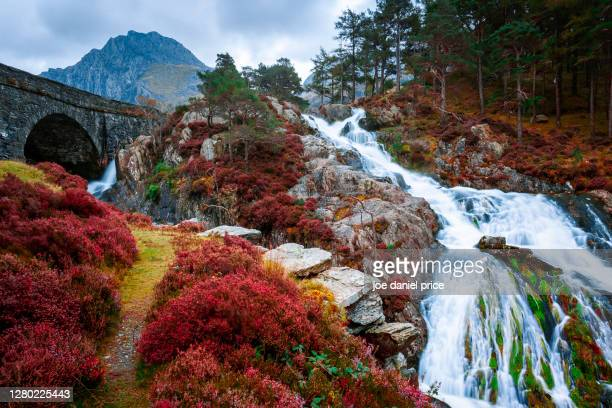 waterfall, bridge, tryfan, ogwen valley, llanberis, snowdonia, wales - landscape scenery stock pictures, royalty-free photos & images