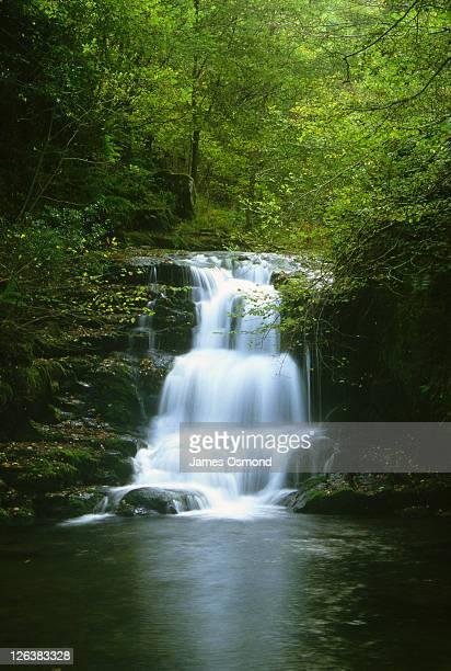 A waterfall cascading down rocks near Watersmeet in Exmoor National Park, Devon.