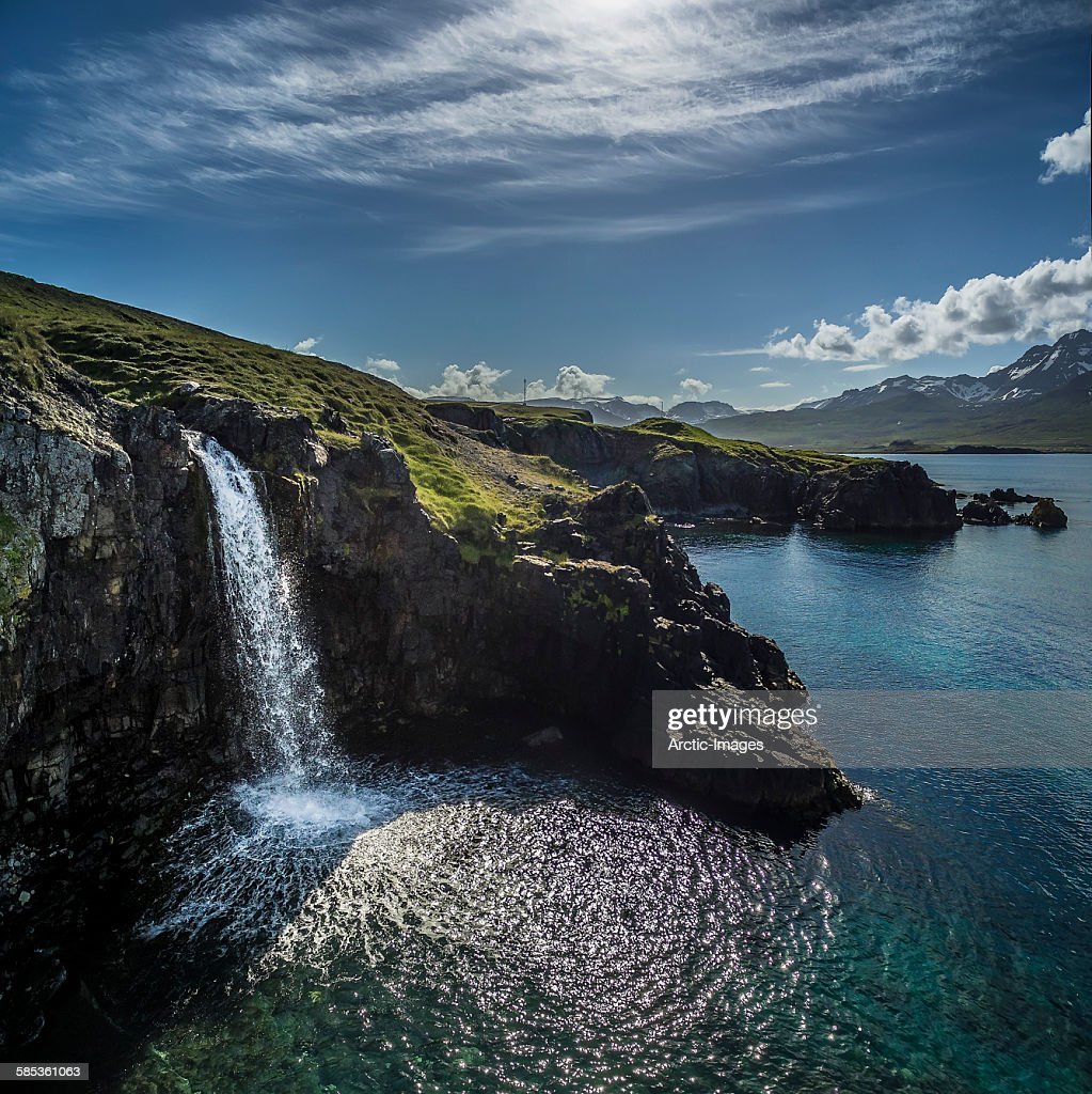 Natural waterfall coming out of the cliff, cascading into the sea, shot using a drone, Borgafjordur East, Iceland