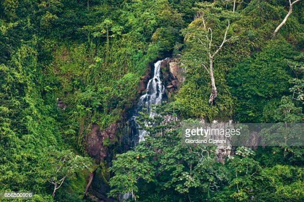 Waterfall, Cocos Island.