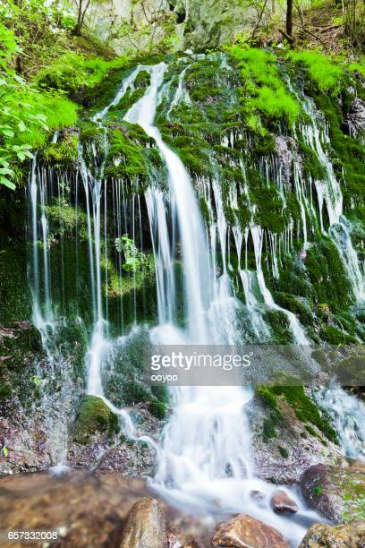 waterfall drops down a moss covered cliff - spring flowing water stock pictures, royalty-free photos & images
