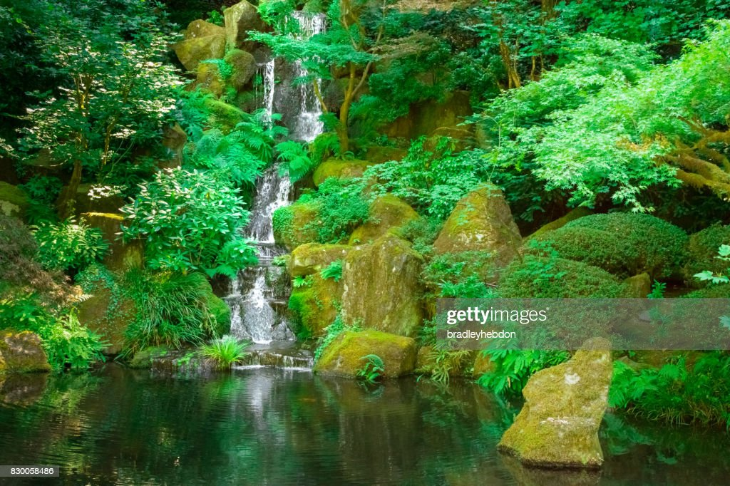 Waterfall Gently Runs Into Japanese Zen Garden Koi Pond