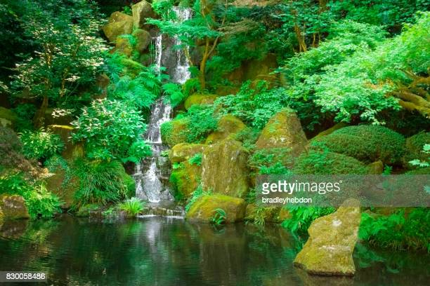 waterfall gently runs into japanese zen garden koi pond - buddha foto e immagini stock
