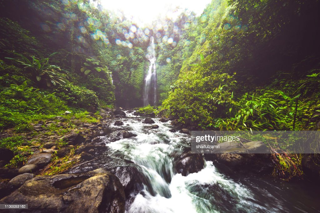 Waterfall hidden in the tropical jungle of Bali, Indonesia. : Stock Photo