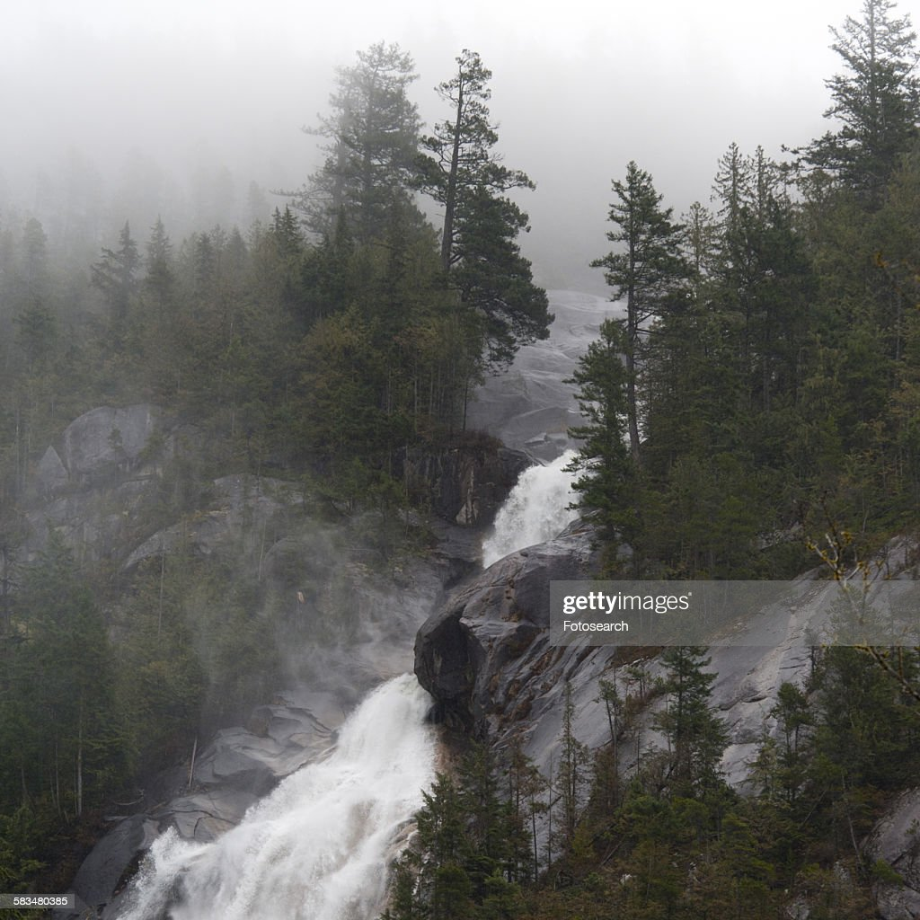 Waterfall in a forest in Shannon Falls : Stock Photo