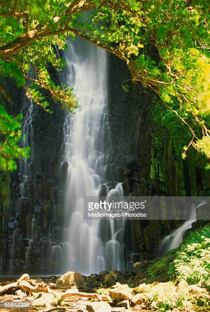 Waterfall in a forest, Los Chorros Falls, Poas Valley, Costa Rica