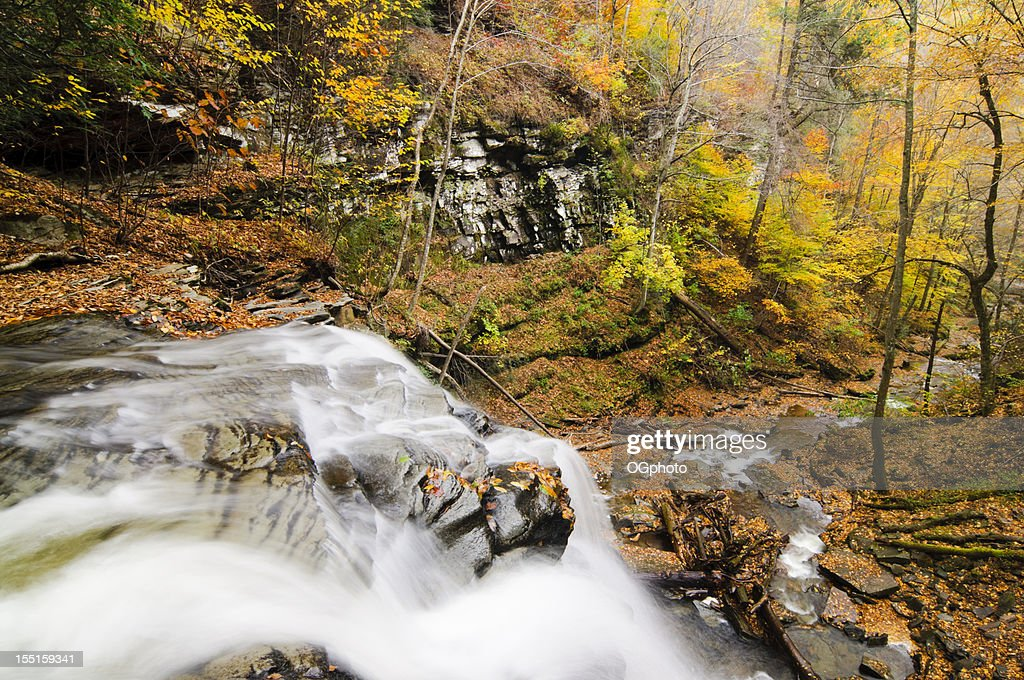 Waterfall in Autumn forest. : Stock Photo
