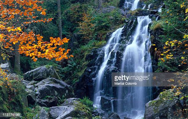 waterfall in autumn - martial stock pictures, royalty-free photos & images