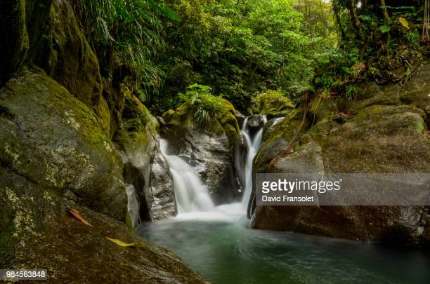 waterfall in bassin bleu in guadeloupe. - guadeloupe photos et images de collection