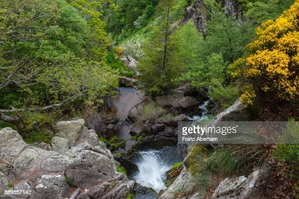 Waterfall in Cèvennes National Park, Gard, France