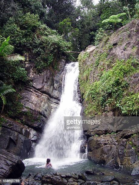 waterfall in el yunque national forest, puerto rico - rio grande puerto rico stock pictures, royalty-free photos & images